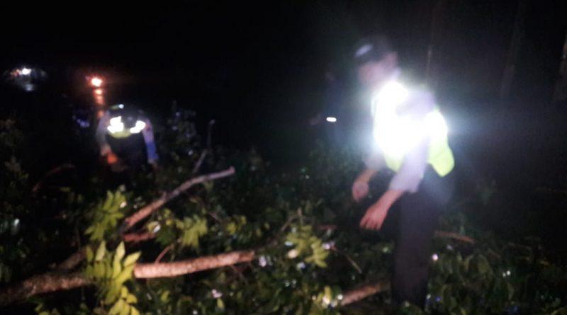 Bersama Warga Polsek Pageruyung Evakuasi Pohon Tumbang yang Menutup Jalan